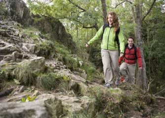 Wandern am Pfälzer Höhenweg