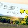 Pfalzcard – aktuelle Informationen