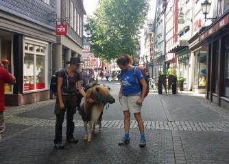 Das Pony Egon erkundet Herborn