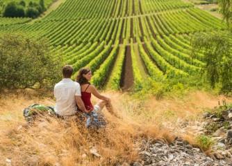 Fünf neue Prädikatswanderwege in Rheinhessen: Eröffnung im August