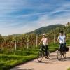 ADFC-Radreiseanalyse: 11 Prozent mehr Radurlauber