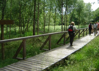 Bundesweiter Wandertag zur biologischen Vielfalt 2013