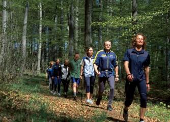 Rundtouren ergänzen künftig das Angebot an Rheinsteig und RheinBurgenWeg