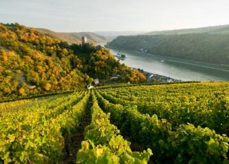 Mittelrhein-Wein, Tourismus und Welterbe in einem Boot