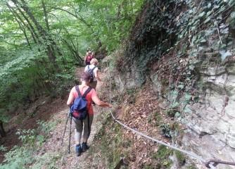 Wandertag für die biologische Vielfalt startet am 1.Mai