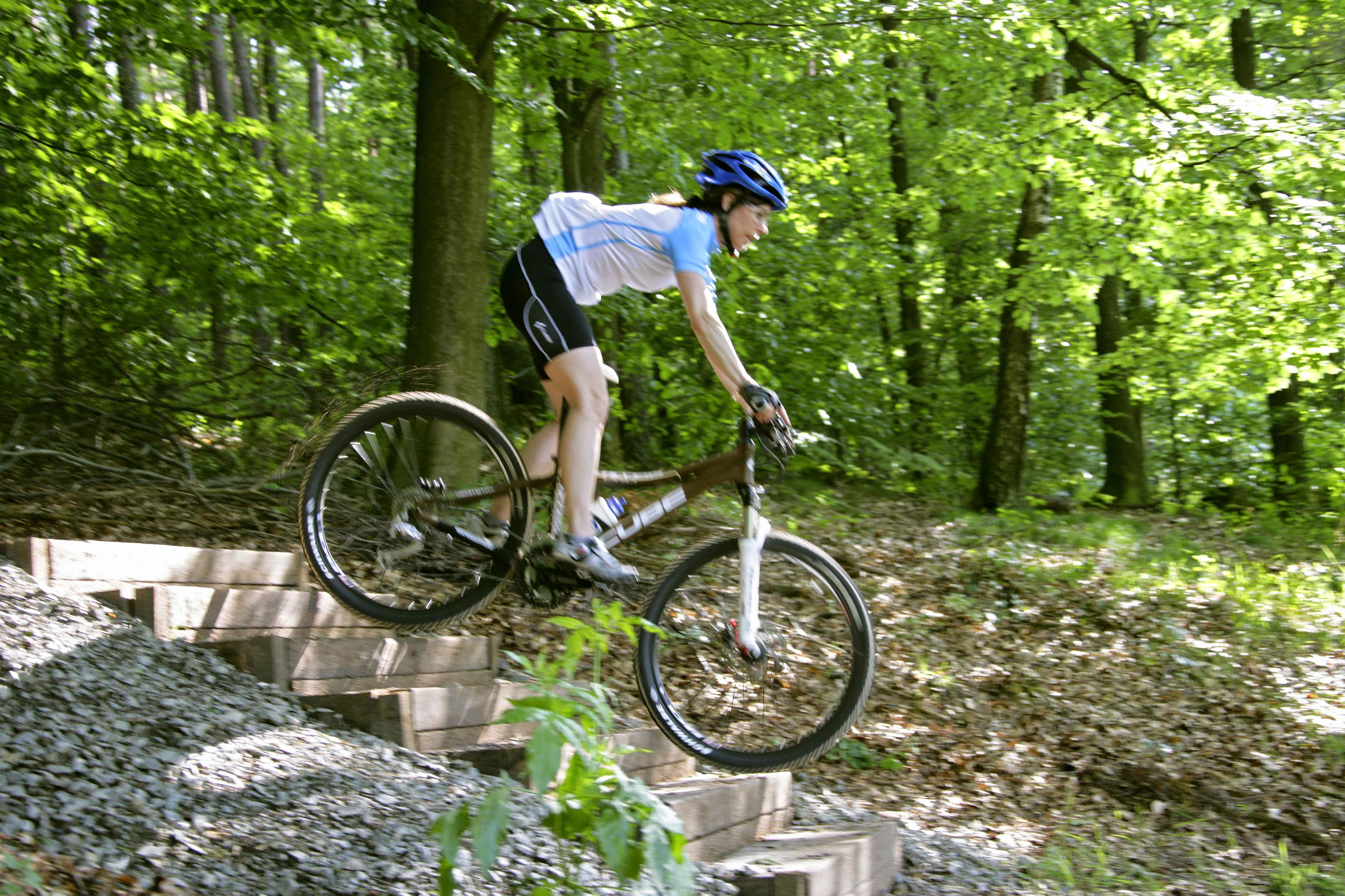 neue premium bike trail tour und studie zum mountainbiketourismus im pf lzerwald. Black Bedroom Furniture Sets. Home Design Ideas