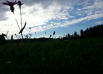 Verein Deutscher Mittelgebirge – Jahrestreffen im Westerwald (September 2014)