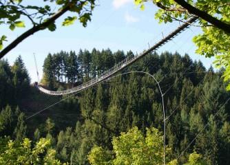 Eröffnung längste Hängeseilbrücke Deutschlands