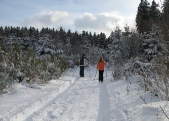 """Fachworkshop """"Wintersport und Klimawandel"""" am 13.01.2017 in Nürnberg"""