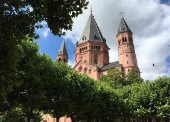 Neues Angebot der Berufsbildenden Schule in Mainz