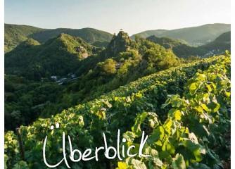 Jahresbericht 2017 der Rheinland-Pfalz Tourismus GmbH liegt vor