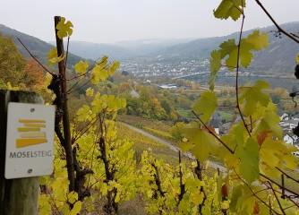 """Auswertung Bloggerwandern Rheinland-Pfalz 2018 """"Moselsteig-Wünschelrouten"""""""