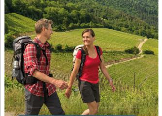 """Minifaltkarte """"Prädikatswanderwege in Rheinland-Pfalz"""" aktualisiert erschienen"""