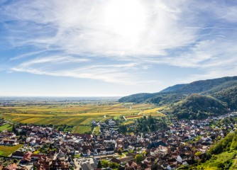 Praktikum bei Pfalz.Touristik e.V.