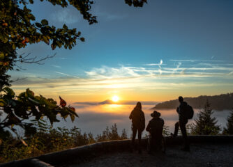 Neue Broschüre: Die Pfalz – Komfortabel und barrierefrei