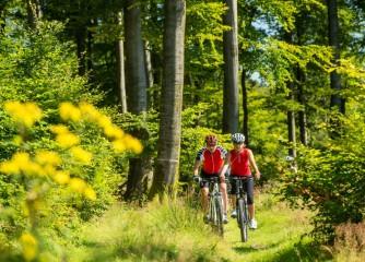 Mountainbike Tourismusforum lädt zum Austausch zu Besuchermonitoring-Leitlinie (Achtung Terminverschiebung!)