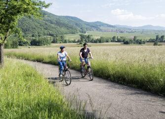 Kampagne #Abseitsradeln des ADFC und Bett+Bike