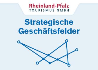 Strategische Geschäftsfelder – Umsetzung in der RPT GmbH