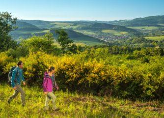 Fachmagazin kürt Pfalz zur drittschönsten Wanderregion