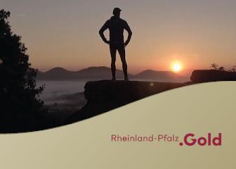 Erste Befragungsergebnisse zur Kommunikation der Tourismusstrategie Rheinland-Pfalz 2025