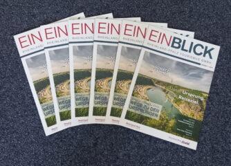 Broschüre EINBLICK – Ausgabe 1/2021