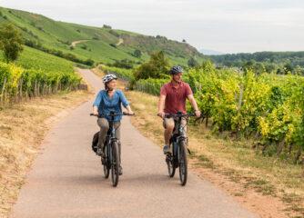 Fördermittel für wettbewerbsfähiges touristisches Radroutennetz in Rheinhessen zugesagt